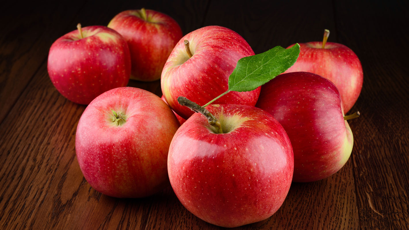 """Image search result for """"Apple"""""""